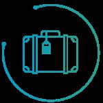 veox control equipaje